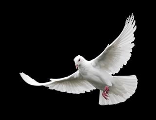 Holy Spirit, Living Breath of God (Getty)